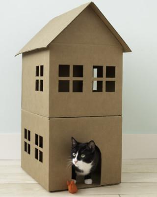 Ушки для кошки своими руками из картона